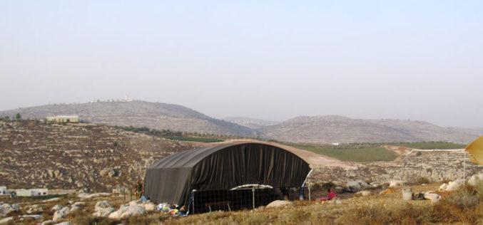 إتلاف 150 غرسة زيتون ولوزيات في بلدة سنجل بمحافظة رام الله