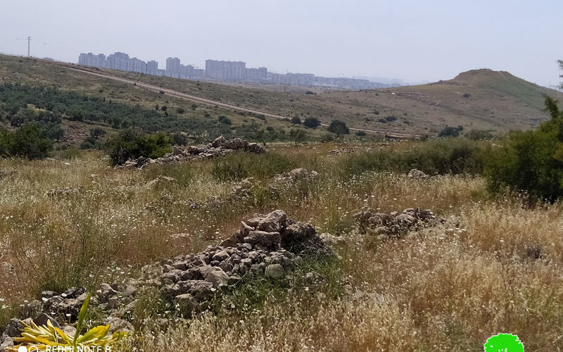 New Jewish Cemetery to be established on confiscated lands from Salfit