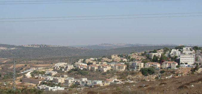 Expanding Revava Colony on Salfit governorate