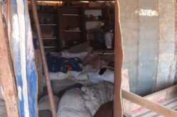 Israeli settlers steal tents and agricultural tools in Tubas governorate