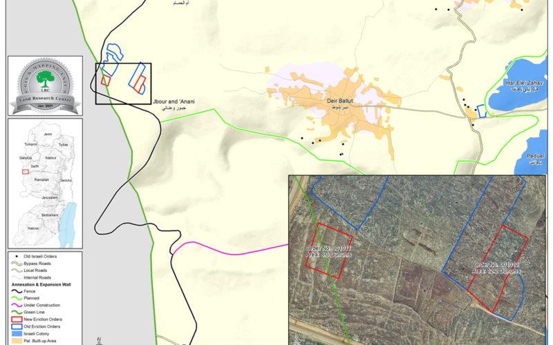 اقتلاع مئات غراس الزيتون واللوزيات من حقول بلدة دير بلوط ويخطر بإزالة مجموعة أخرى / محافظة سلفيت