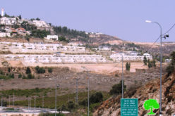 "New Colonial Block to be added to ""Shilo"" colony on Turmus'ayya village lands / Ramallah governorate"