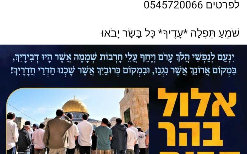 Zionist Organization provoke colonists to break into Al-Aqsa Compound / Occupied Jerusalem