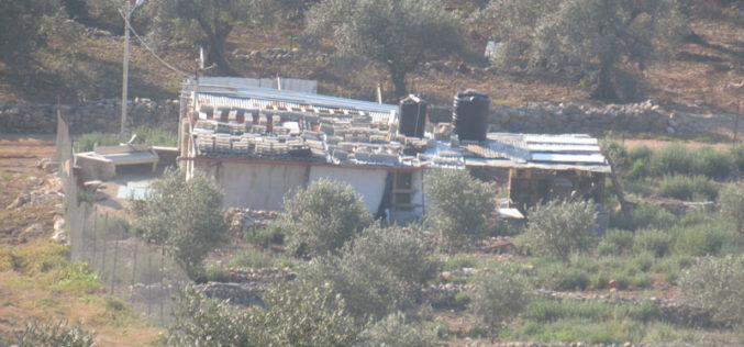 Halt of Work and Removal Notice targets an Agricultural Room in Wadi Ar-Rasha village east Qalqilya