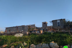 Final Demolition Notice for a Residence in Taqu' town / Bethlehem Governorate