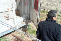 Colonists carry Out an Attack on a plot in As-Shuyukh town / Hebron Governorate
