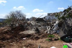 Two Agricultural Rooms Demolished in Al-Khader town / Bethlehem Governorate