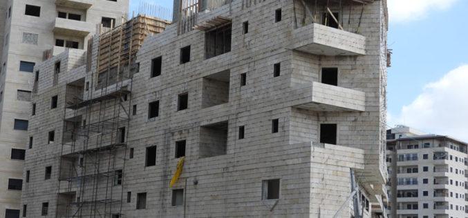 إخطار 6 مساكن بوقف العمل والبناء في بلدة الخضر / محافظة بيت لحم