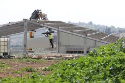 Demolishing and Confiscating an Agricultural facility in Zif / Hebron governorate