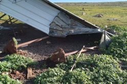 Colonists Demolish a Shack East At-Taybeh town / Ramallah governorate