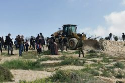 The Israeli Occupation Demolish Four Houses in Al-Mufqara and Khallet Ad-Dabe'a in Masafer Yatta/ South Hebron
