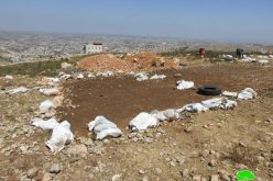 Two Tents Demolished and Confiscated in Khallet Taha – West Dura / Hebron Governorate
