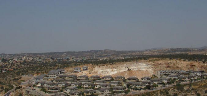 The Israeli Occupation Authorities Ravage Vast areas of Mas-ha land/ Salfit Governorate