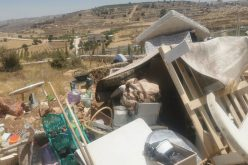 Illegal Colonists Ravage an ancient house for Miswada family at the Old City of Hebron