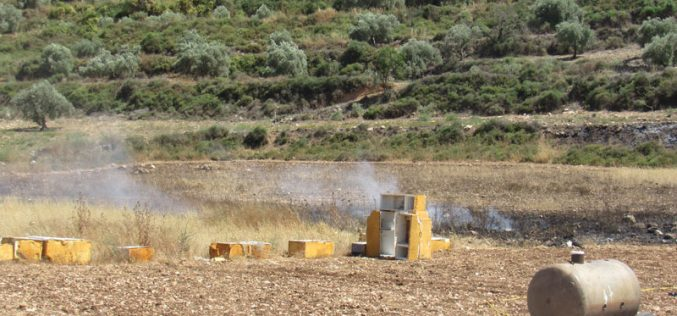 جيش الاحتلال الإسرائيلي يتعمد إحراق حقول القمح في قرية اماتين بمحافظة قلقيلية