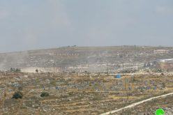 Ravages in Yasuf village to expand Kfar Tapuah colony / Salfit governorate