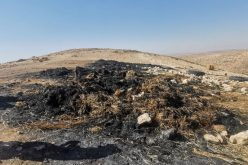 Colonists set fire to Bales of Hay east Yatta / Hebron Governorate