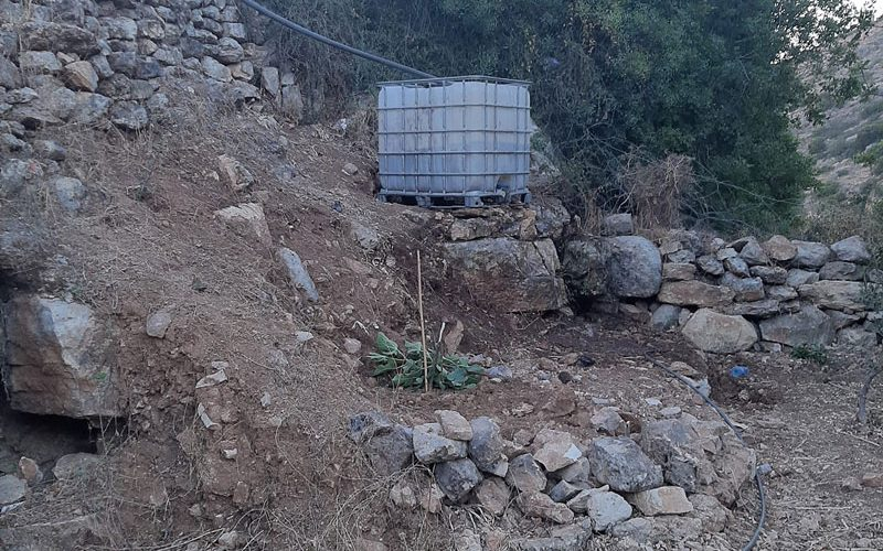 Cutting olive Saplings and Destroying Agricultural Properties in Wad Qana / Salfit Governorate