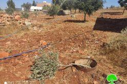 مستعمرون يقطعون اشتال زيتون وسرقة مضخة مياه في قرية جالود / محافظة نابلس