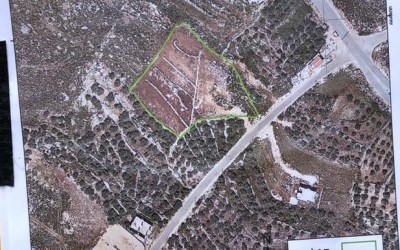 Notices for Structures and Lands in Salfit City