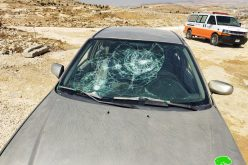Illegal Colonists Wage an Attack Against Citizens and Their Properties in Masafer Yatta